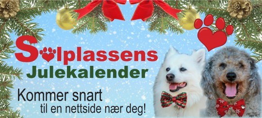 Reklame for Julekalenderen